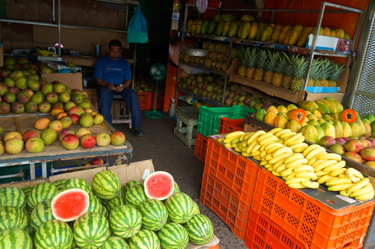 Buying mango on the market might seem odd, as it grows as a grass everywhere.